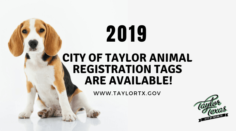 2019 Registration Tags Graphic
